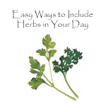 Using Herbs Booklet
