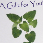 Greeting Gift Cards-gift card, gift certificate, giftcard, birthday, holiday, father's day, mother's day, gift giving,
