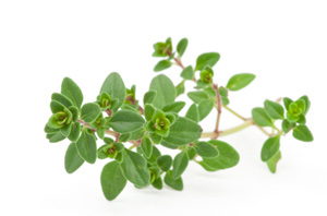Thyme is antiviral and antibacterial.
